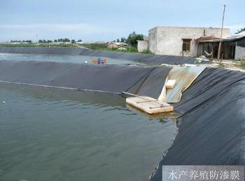 江西大林工程材料公司_水产养殖防渗膜